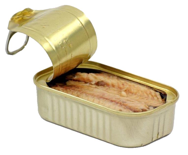 tin_mackerel
