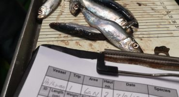 Scottish pelagic fishermen