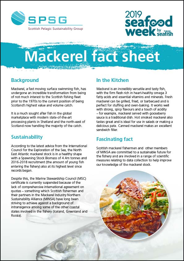 Mackerel Fact Sheet