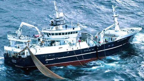 Mackerel fishery now in full swing