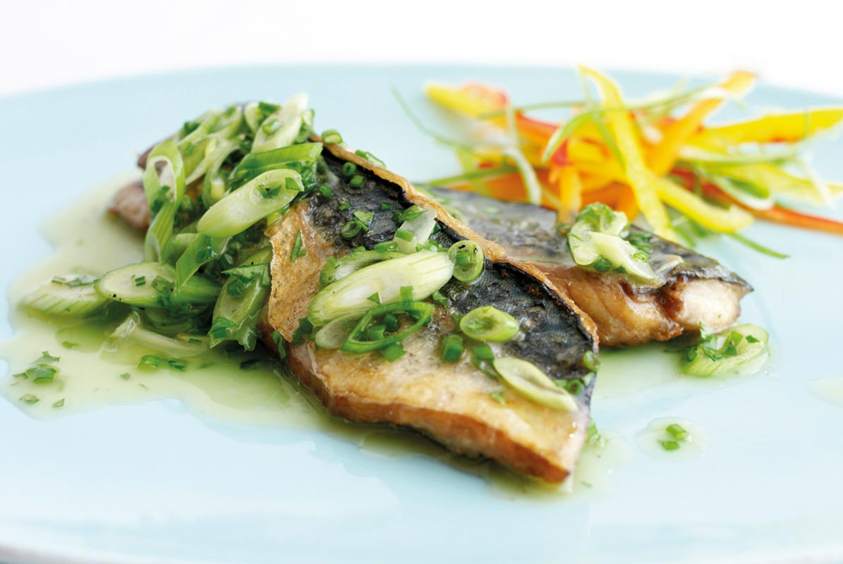 Grilled Fillet of Mackerel with a Parsley and Spring Onion Dressing